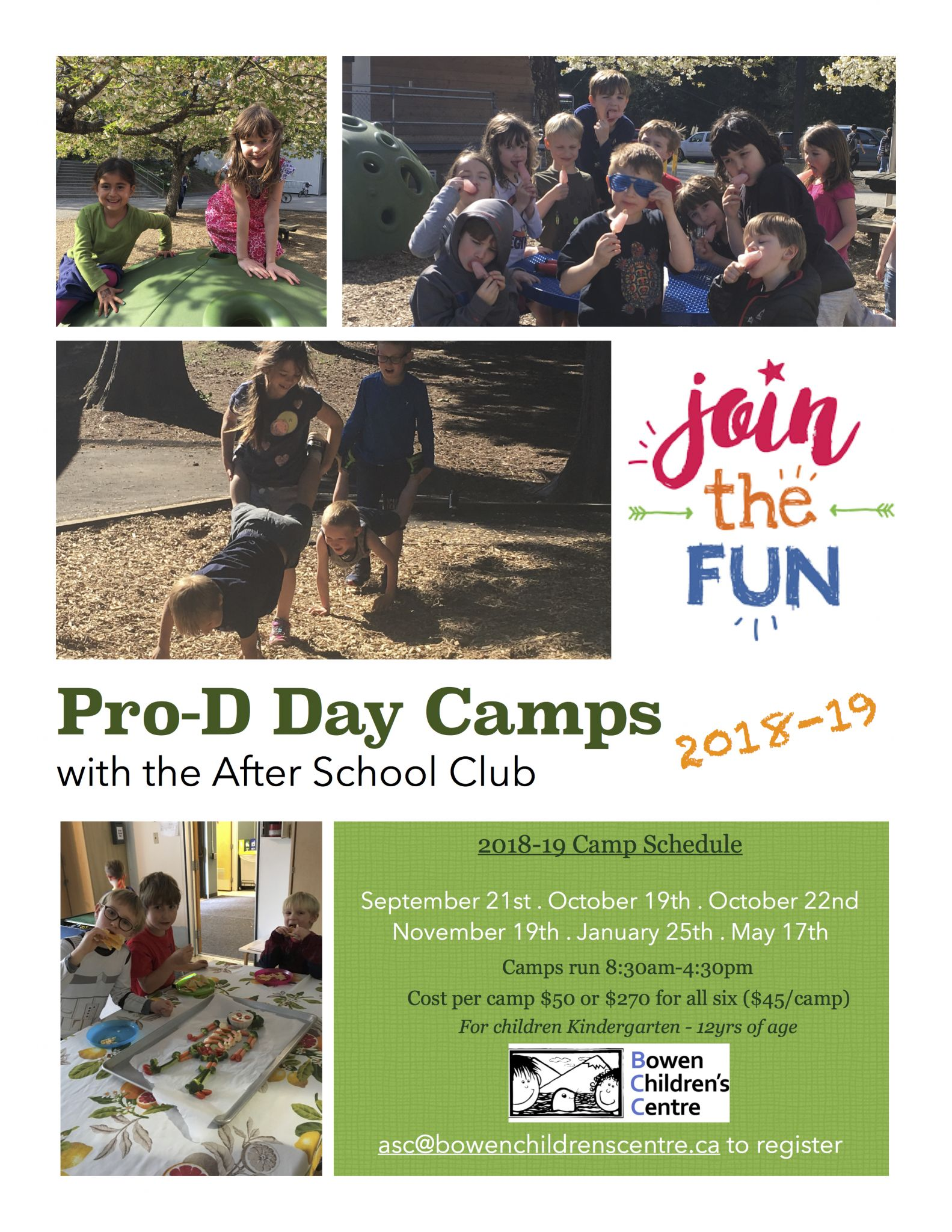 Pro-D Day Camps 2018-19